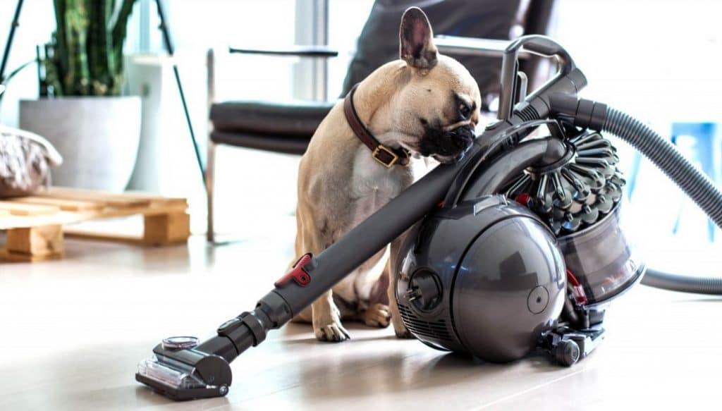 Pet-Hair-Vacuum-Cleaner