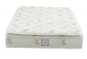 Signature Sleep 13 inch Pillow Top Mattress 2 300x203 image