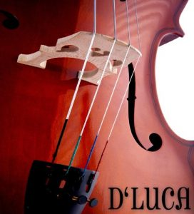 D'Luca MC100 Meister Student Cello Package_3