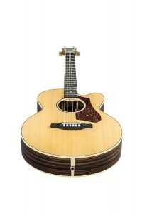 Gibson Acoustic Parlor-3