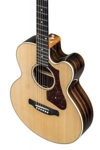 Gibson Acoustic Parlor-4