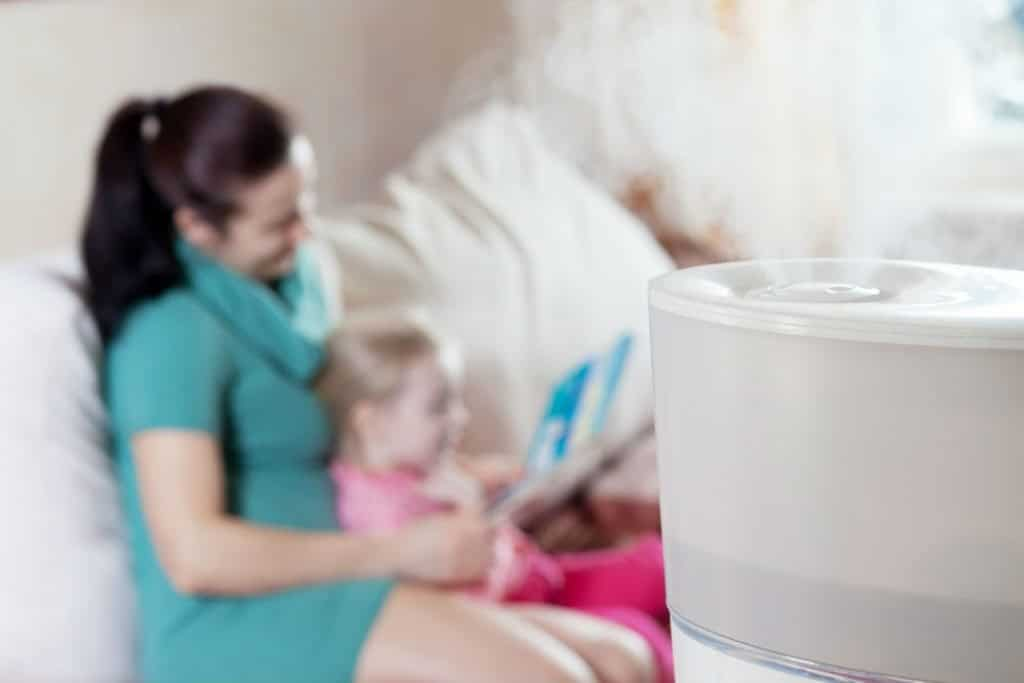 Humidifier for Sinus Problems 2