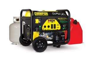 Champion Power Equipment 100165-1