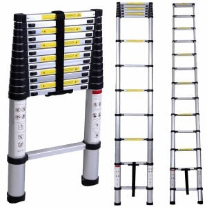 WolfWise Telescopic Ladder-1