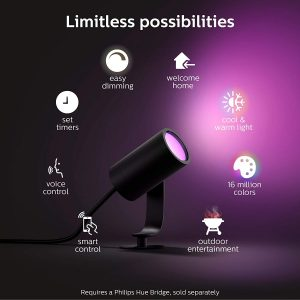 Philips Hue Lily 2