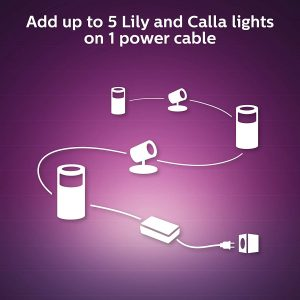 Philips Hue Lily 4