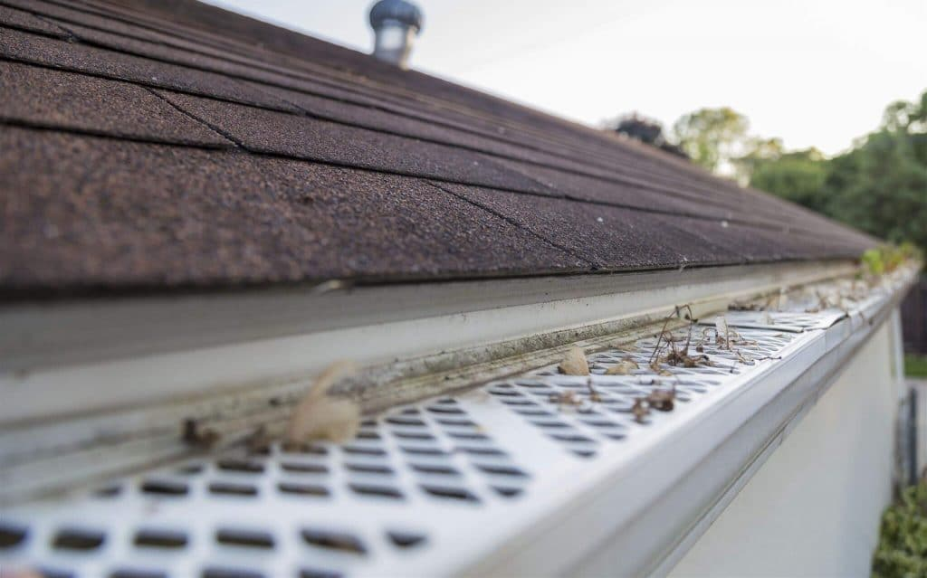 5 Secure Gutter Guards for Pine Needles - New Solution for an Old Problem