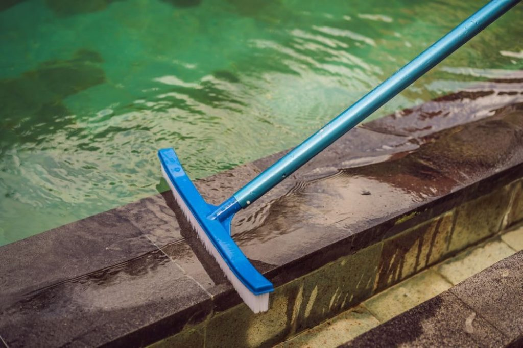6 Best Pool Brushes - The Easiest Way To Keep Your Pool Clean