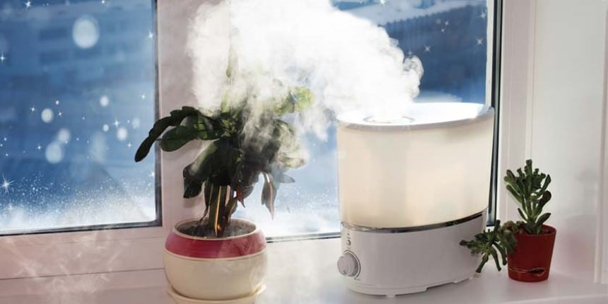 Humidifiers vs Air Purifiers - How Do They Differ?