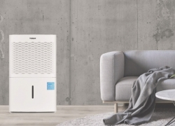 5 Quietest Dehumidifiers — Enjoy Healthy Home Environment without the Annoying Noise!