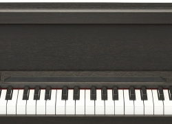 7 Outstanding Digital Pianos under $1000 – Enjoy the Classical Sound in Your Living Room!