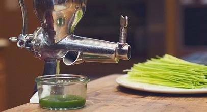 5 Best Wheatgrass Juicers to Buy in 2018 – Reviews and Buying Guide