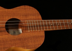 7 Most Remarkable Baritone Ukuleles in 2019 – Reviews and Buying Guide