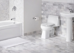 Best Flushing Toilet – Use All The Benefits of Progress
