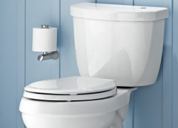 12 Best Toilets For Every Bathroom – Choose The Throne That Fits You