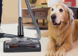 9 Vacuums for Pet Hair With Awesome Suction – Leave No Hair Behind!